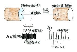 糸電話の縦波